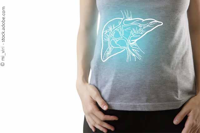 Gesundheitsrisiko: Was Bedeutet Es, Wenn Die Leber Fett Wird?