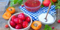 Fettleber Und Fructose