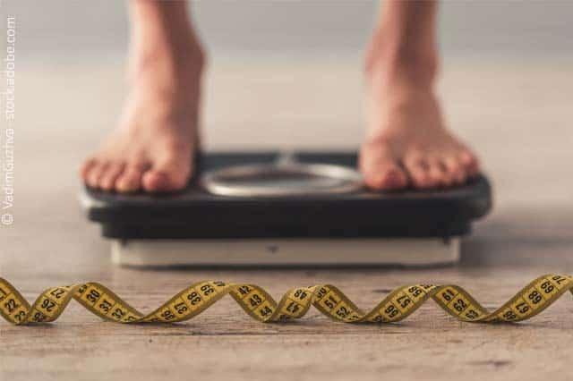 Abnehmen Und Stoffwechsel